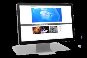 Différence entre la création et la refonte de votre site WEB